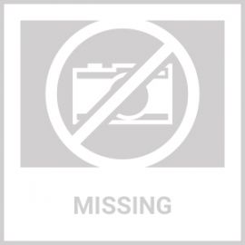 SUREFIRE 6 VOLT SHOTGUN FOREND WEAPON LIGHT MOSSBERG 500/590