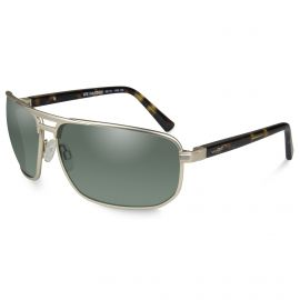 WILEY X HAYDEN GREEN SATIN GOLD FRAME SUNGLASSES POLARIZED
